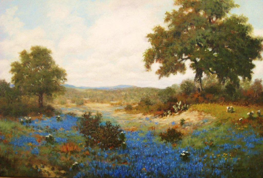 """""""Colorado 2011"""" by Patsy Ledbetter OPA"""