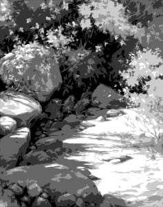 Julie Gilbert Pollard - Dutchman's Gold Study - Black & White Cutout