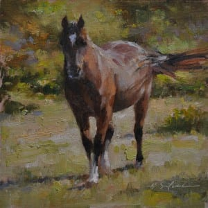 """The Curious Bay Mare"" by Hodges Soileau OPA, 6x6"