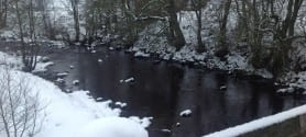 Colleen-Maxey-Scenic Brook in Northumberland near Unison