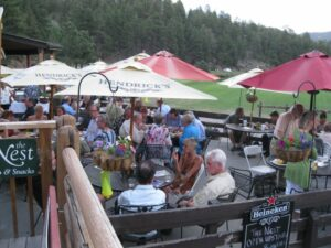 American Art Collector Party - OPA National - Evergreen, CO - 3