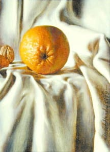 David Hardy – An Orange with an Attitude – 12″x 9″ – Oil