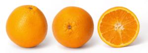 Orange Cross Section - Wikipedia.org