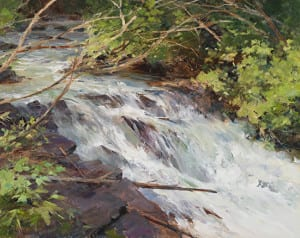 River running through trees