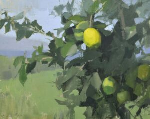 Lime Tree 16x20 Oil